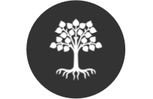 WRBC Future Tree